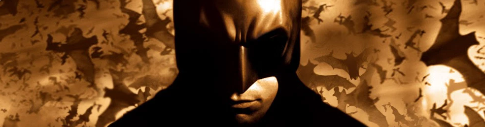 Banner Batman Begins