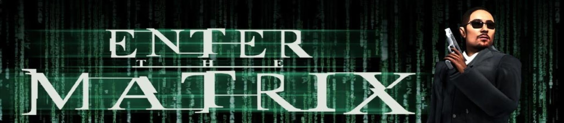 Banner Enter the Matrix