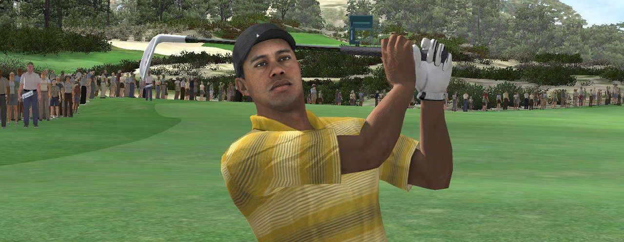 Banner Tiger Woods PGA Tour 2004