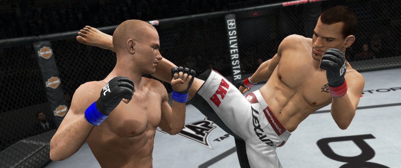 Banner UFC Throwdown