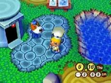 Review Animal Crossing: Je komt terecht in je eigen dorpje! Pas alles naar wens aan en sluit vriendschappen met de dieren!