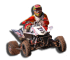 kopje Geheimen en cheats voor ATV Quad Power Racing 2