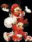 Afbeelding voor Disney Sports Football