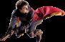 Afbeelding voor  Harry Potter WK Zwerkbal