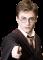 Geheimen en cheats voor Harry Potter en de Steen der Wijzen