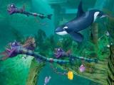 In dit spel leer je veel verschillende zeewezens kennen.
