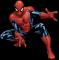 Afbeelding voor Spider Man