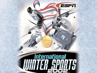 Herleef de winterspelen van 2002 met dit leuke sportspel.