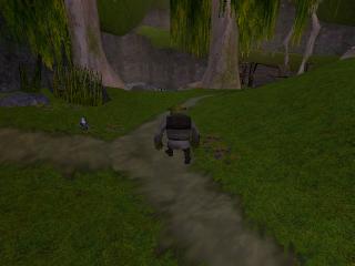 Verken de bossen en moerassen uit de Shrek-films.