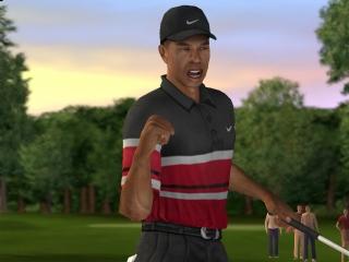Speel als Tiger Woods of 8 andere progolfers!