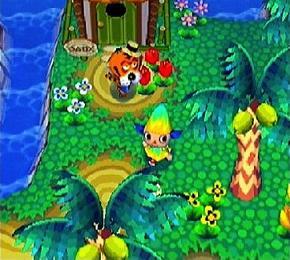 Als je een GBA verbindt met dit spel wacht er een schildpad op je aan het strand, die brengt je naar een eiland waar het altijd zomer is. Een speciaal dier woont daar en je kunt er zeldzame insecten en vissen vangen.