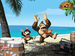 Het is altijd een feest met Donkey Konga 2.