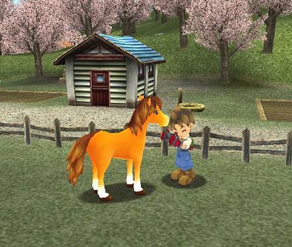 Als je een paard hebt wordt alles een stuk makkelijker, je gaat een stuk sneller, raakt niet uitgeput en je kunt hem (als je buiten staat) altijd roepen.