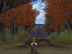 Net als in Animal Crossing verandert in Harvest Moon het jaargetijde ook, elk jaargetijde duurt tien dagen, elke dag duurt 24 (versnelde) uren, je kunt er zelf voor kiezen hoe lang je slaapt en hoe je je dag indeelt.