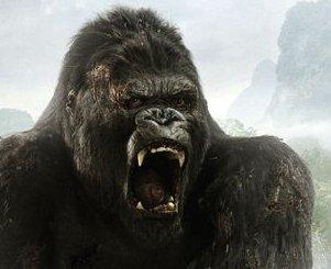 Deze aap moet je niet verwarren met Donkey Kong, dan wordt hij heel boos!
