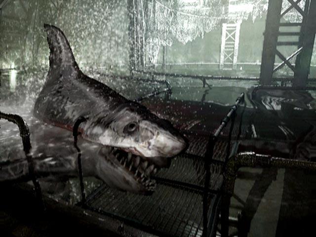 De eerste Resident Evil voor de GameCube is een remake van de playstationversie. Het is dus geen gewone port, sommige delen in het spel zijn anders en graphics zijn enorm verbeterd.