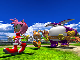 Team Rose met Amy Rose, Cream the Rabbit en Big the Cat.
